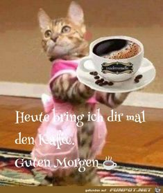 Such a nice idea little kitty - Guten Morgen - Kaffeekunst Good Night, Good Morning, Morning Greetings Quotes, Diabetic Dog, Cat Treats, Dog Snacks, Coffee Humor, Animals And Pets, Free Food