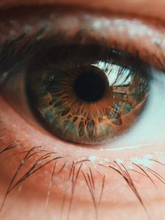 Image shared by zillegry. Find images and videos about photography, eyes and green on We Heart It - the app to get lost in what you love. Beautiful Eyes Color, Stunning Eyes, Pretty Eyes, Cool Eyes, Photo Oeil, Rare Eye Colors, Rare Eyes, Eye Close Up, Eye Pictures