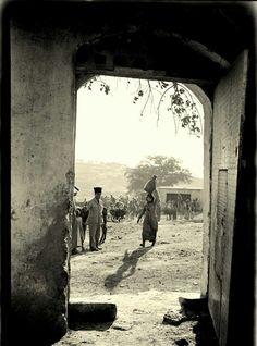 قرية صفورية المهجرة - فلسطين 1938م Immediate village displaced - Palestine 1938 m