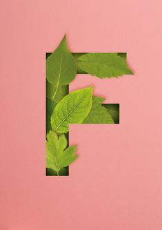 How to Create a Quick 3D Botanical Letter Effect in Adobe InDesign  Design Psdtuts