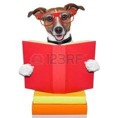 school dog reading a big red book