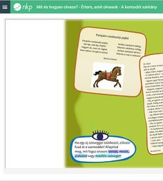 Tanító Online - Feladatbank Komodo, Drinks, Drinking, Beverages, Drink, Beverage