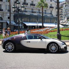 229 best bugatti images bugatti cars bugatti veyron expensive cars rh pinterest com
