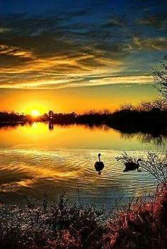 Natura es bella..