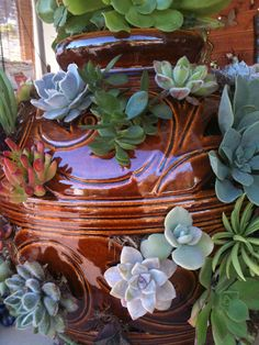 strawberry pot with succulents
