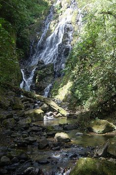Macho Falls, El Valle, Panama. I climbed up this waterfall many years ago. Photo Credit: Panama 473-Macho Falls-El Valle Panama by el_ross_2000, via Flickr
