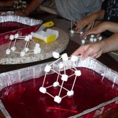 This is part 5 of a 6 part hands-on unit study on Earth Science. Create a tsunami, build marshmallow structures that can withstand an earthquake,...