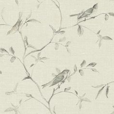 York Wall Coverings York Wallcoverings Patina Vie L x W Birds of a Feather Wallpaper Roll Feather Wallpaper, Toile Wallpaper, Botanical Wallpaper, Paper Wallpaper, Green Wallpaper, New Wallpaper, Wallpaper Roll, Peel And Stick Wallpaper, Classic Wallpaper