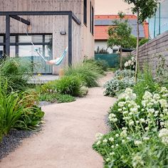 Garden Design, Sidewalk, Home And Garden, Backyard, Cottage, Landscape, Plants, Outdoors, Gardening