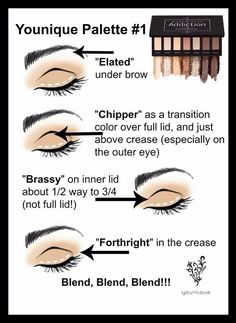 Don't be intimidated by palettes! Here is a quick how-to guide for Younique's addiction eye palette #1 www.youniqueproducts.com/brittanygarvie