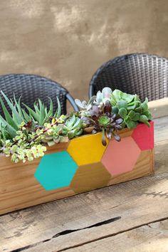 DIY Hexagon Wood Succulent Planter : PepperDesignBlog.com