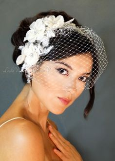Crystals and Lace Bridal Birdcage Veil www.ShopLeslieV.com