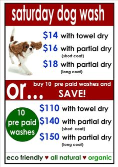 15 best little monsters grooming images dog grooming business rh pinterest com
