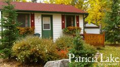 Patricia Lake Bungalows  » Cottages Like the Type 1 cottages Bungalows, Type 1, Cottages, Shed, The Unit, Outdoor Structures, Plants, Lodges, Lean To Shed