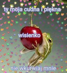 Sweet Texts, Cute Texts, Polish Memes, Bad Humor, Weekend Humor, Sweet Pic, Funny Vines, Wholesome Memes, Kermit