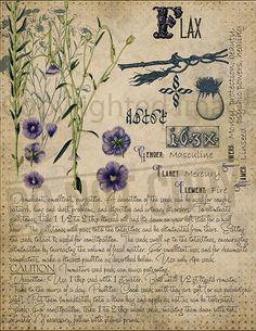 Book of Shadows page. Sorry, This page is only available to my customers for free, I don't sell it in the Etsy Magic Herbs, Plant Magic, Herbal Magic, Magick Spells, Witchcraft, Witch Herbs, Salud Natural, Witch Aesthetic, Practical Magic