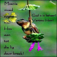 God is in beheer Kwazulu Natal, Afrikaans, God, Pets, Animals, Fish, Motivation, Twitter, Quotes