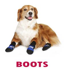 """62a7a00e9e0baf These Fleece-Lined Dog Boots are not just fancy footwear for canines. They  provide superior performance and """"Pawsitive Relief"""" for your canine  companion."""