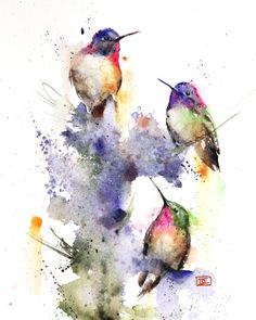 Three Hummingbird Watercolor Bird Print By Dean Crouser - Threes Company High Quality Limited Edition Print From An Original Watercolor Painting By Dean Crouser This Print Is Signed And Numbered By The Artist Edition Limited To This Birds Painting, Watercolor Art, Art Painting, Art Drawings, Watercolor Hummingbird, Bird Art Print, Watercolor Paintings Nature, Art, Watercolor Bird