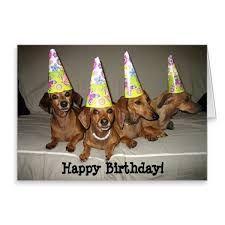 Afbeeldingsresultaat voor dachshund happy birthday quotes with pictures