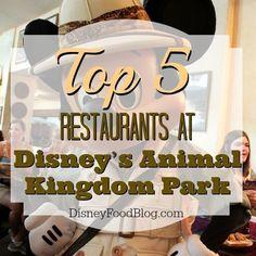 Top Five Animal Kingdom Restaurants