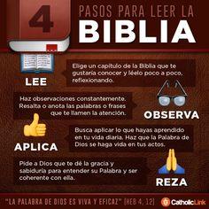 Biblioteca de Catholic-Link — Infografía: 4 pasos para leer la Biblia