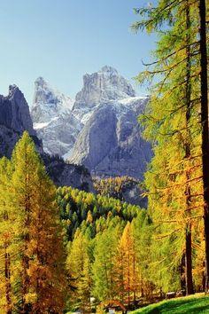 Skifahren in Alta Badia, Italien: großes & abwechslungsreiches Skigebiet, wunderschöne Bergkulisse beim Skifahren, sehr familienfreundlich. Mehr Infos im Skiführer auf snowplaza.de. #skiing