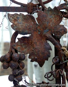 rusty leaf - photo/picture definition - rusty leaf word and phrase image