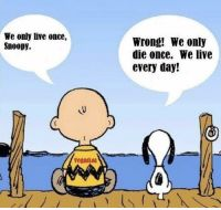 Wise words from Snoopy! Strive to live every day to the best of your ability. Leadership, Live Meme, Wednesday Motivation, Retail Robin, Snoopy Quotes, Charlie Brown And Snoopy, Happy Thursday, Words Quotes, Smile Quotes