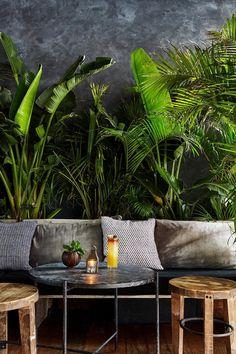 Excellent simple ideas for your inspiration Coffee Shop Design, Cafe Design, House Design, Jungle Room, Jungle House, Soho Hotel, Deco Restaurant, Decoration Inspiration, Tulum