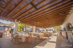 Destino Ibiza - Modest Restaurant