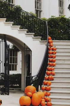 Mini pumpkins on a grand staircase.