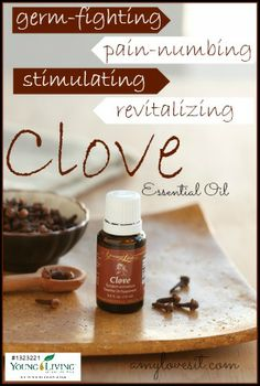 Young Living Essential Oils: Clove for Pain. Young living essential oils Amy & Brad Janzen - Interested in purchasing please use my ID thank you! Clove Essential Oil, Essential Oil Uses, Natural Essential Oils, Natural Oils, Natural Cures, Young Living Oils, Young Living Essential Oils, Yl Oils, Living Essentials