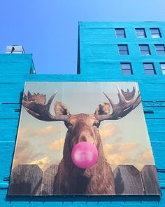 Chicago is known for many things:sports, jazz, comedy, and, of course,deep-dish pizza. But the Windy City is also one of the ... #streetart