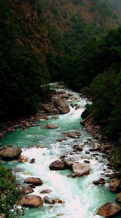 #Nature #Landscape #Stream #River #Forest