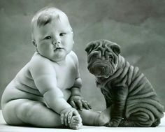 Two little cuties, baby and sharpei • photo: Anne Geddes on Photobucket