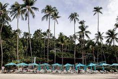 Hotel Love: Four Seasons, Koh Samui