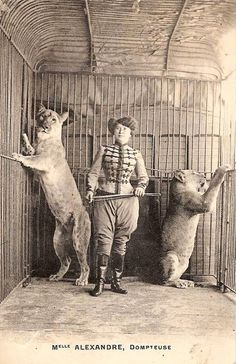 argante the lion tamer Old Circus, Circus Acts, Night Circus, Circus Train, Dark Circus, Vintage Circus Photos, Vintage Photographs, Vintage Images, Vintage Circus Performers