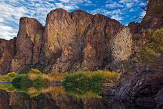 This is an image taken from the Salt River, close to Phoenix with fall colors.