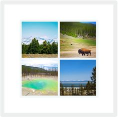 24 4 x 6 #Yellowstone/Grand Teton National Park Blank Cards on Etsy, $32.00