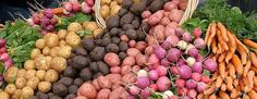 Farmers Markets Where to find all the Farm Markets in the Berkshires