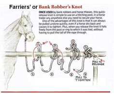 Bank robber knot