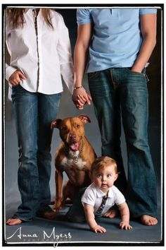 Family and baby portraits with dog, Bay Area Family and Baby Photographer - East Bay Studio