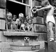 Twitter Kids washing a meerkat in south Africa (1950's)