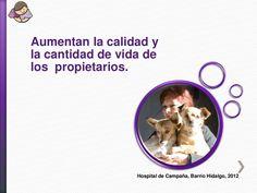 Aumentan la calidad y la cantidad de vida de los propietarios. Hospital de Campaña, Barrio Hidalgo, 2012