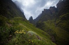 Looking up the Imweni Pass Drakensberg South Africa. by: *carlosthe.