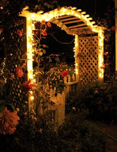 gardens with flowers that glow at night - Google Search