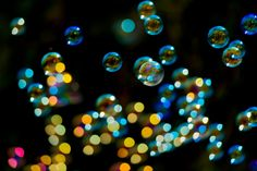 Boom bubble or bust for fintech?