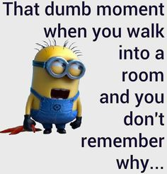 I do this all the time Even have to go back to where I started to try to reme… is part of Minion jokes - Funny Minion To Make You LOL 👈🏻😎😁👍 Minions Images, Funny Minion Pictures, Funny Minion Memes, Minions Love, Minions Quotes, Minion Talk, Minion Humor, Really Funny Memes, Stupid Funny Memes