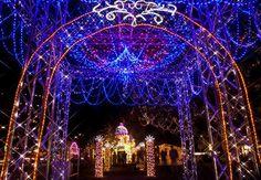 Hiroshima Dreamination   Visit Hiroshima Lights display (1.4 million bulbs are used)